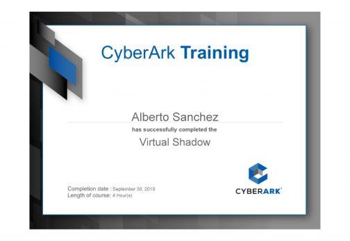 Virtual Shadow course